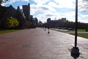 Picture of Red Brick Walkway